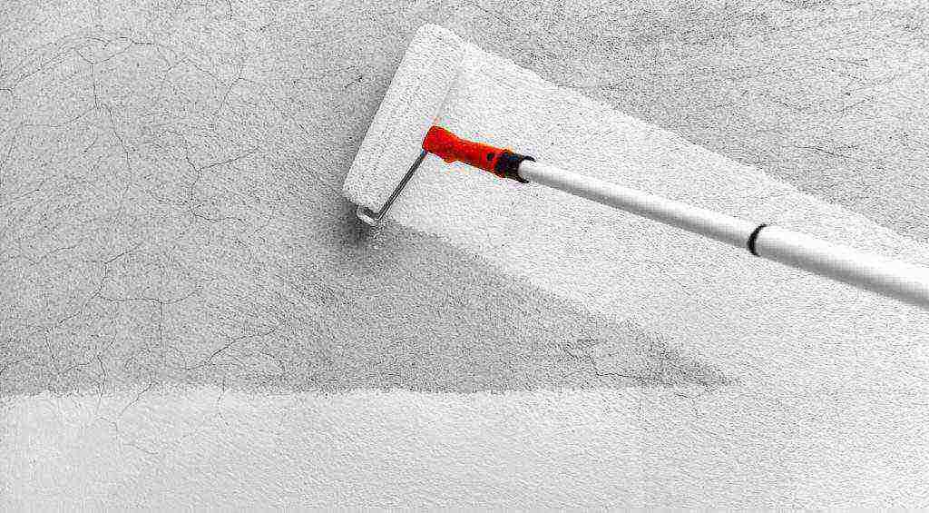 Выбор, разведение, нанесение грунтовки для стен